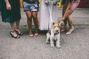 Sheffield Female Wedding Photographer