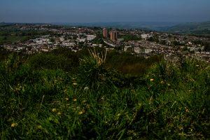 Bole Hills View