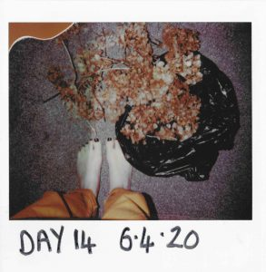Every day scene Polaroid